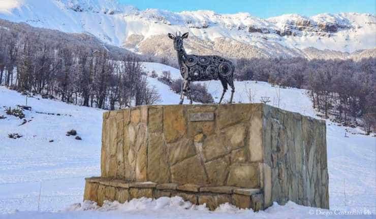 Chapelco Ski Resort con Fundación Temaiken