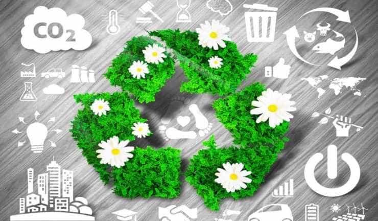 Marcas sustentables, las elegidas del consumidor